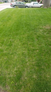 Lawn mowing Windsor Heights