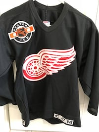 Detroit Redwings Hockey Jersey Twin Lake, 49457