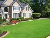 Weed spraying and lawn fertilizer Brighton