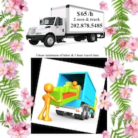8 Junk removal (Springfield) (Sterling) (Triangle) Gaithersburg
