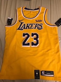 Lebron Swingman Jersey. (LARGE SIZE) Bought from Staples Center never worn. Mississauga, L5M 5S3