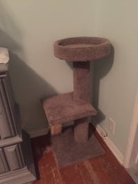 Cat tree scratching post Fullerton, 92835