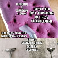 Carpet&Sofa Steam Cleaning/Mattress Clean Kitchener