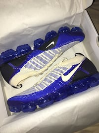 DEADSTOCK Vapormax 2 (Size 11.5) New York, 10466