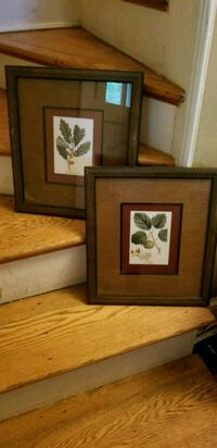 brown wooden framed painting of flower Alexandria, 22312