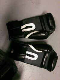 Boxing Gloves Everlast Professional  Surrey