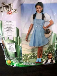 Dorothy costume and accessories  Barrie