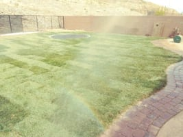 Sod and grass installation