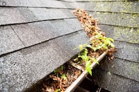 Gutter cleaning null