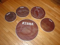 Five mesh drum heads GLOVERSVILLE