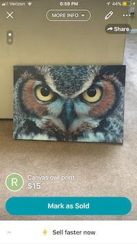 Free with any purchase, Canvas owl print Wilmington, 28412