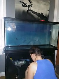 Aquarium with cabinet and fishfood with light fixture