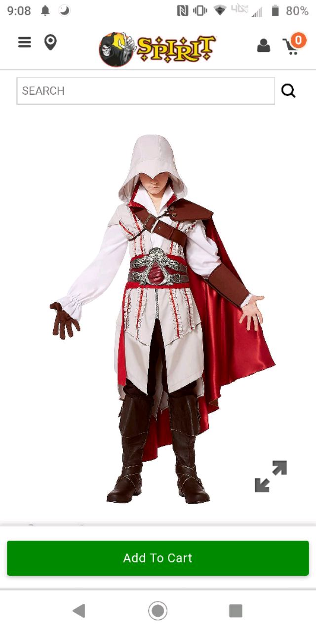 Photo Halloween Costume - Ezio from @ss@ssin's Creed