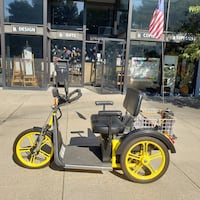 Palmer 2 seater mobility outdoor trike