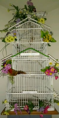 Homemade bird cage for cards for wedding Frederick