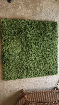 brown and green area rug