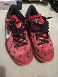 Red Kobe 8 Winnipeg, R2W