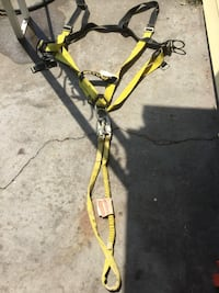black and yellow harness strap Norfolk