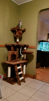 Cat tree  Omaha, 68134