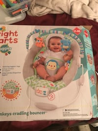baby's Fisher-Price bouncer box Gainesville, 32607
