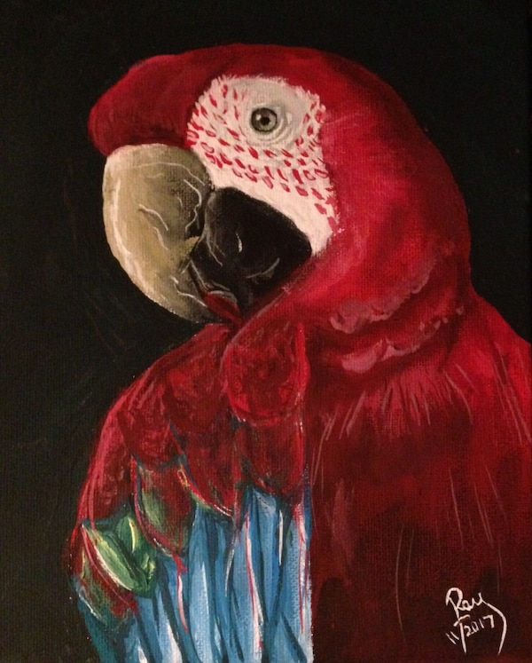 Red macaw painting