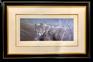 """Lawrence Dyer """"Eyes Of The North Black Wolf"""" signed/numbered"""