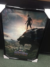 Black Panther Picture Frame Washington, 20036