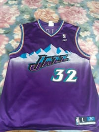 Purple and Green Karl Malone NBA Adidas jersey Mississauga, L5R 1N6
