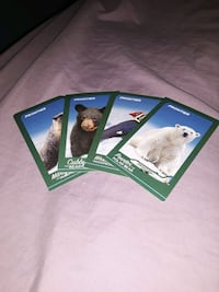 Frontier plane trading cards Sioux Falls, 57105