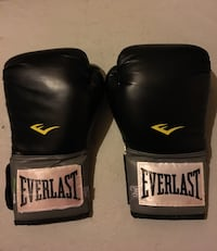 Everlast Pro Style Training Gloves - 12 oz Whitby, L1R