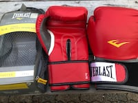 EVERLAST TA16 Advanced Pro Style Training Gloves Boxing Gloves LIKE NEW &25 Vancouver, V5R 5J4