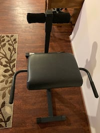 Roman Chair - Abs/Back Extensions 17 km