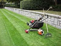 Lawn mowing Amherst, 68812