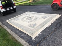 Beautiful area rug 8x10 Ancaster, L9G
