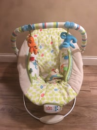 baby's white and green bouncer Mount Sterling, 40353