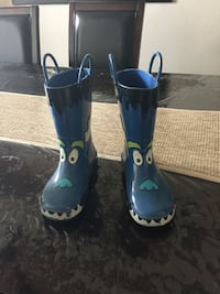 Pair of blue-and-white galoshes