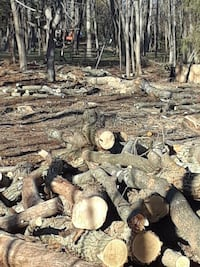 Firewood Wading River, 11792