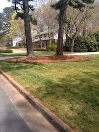 Need Pine Straw  Free Quotes