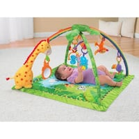 ***Like New***Fisher-Price Rainforest Gym | K4562  Toronto, M9P 2J9