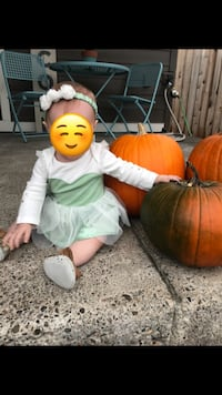 Baby Tinkerbell Costume  Vancouver, 98682