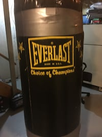 Everlast heavy weight bag with gloves and chains Calgary, T2K 6E4