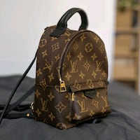 LV Louis Vuitton Palm Springs Mini Backpack New York, 10019