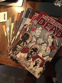 Original walking dead graphic novels / comics 3721 km