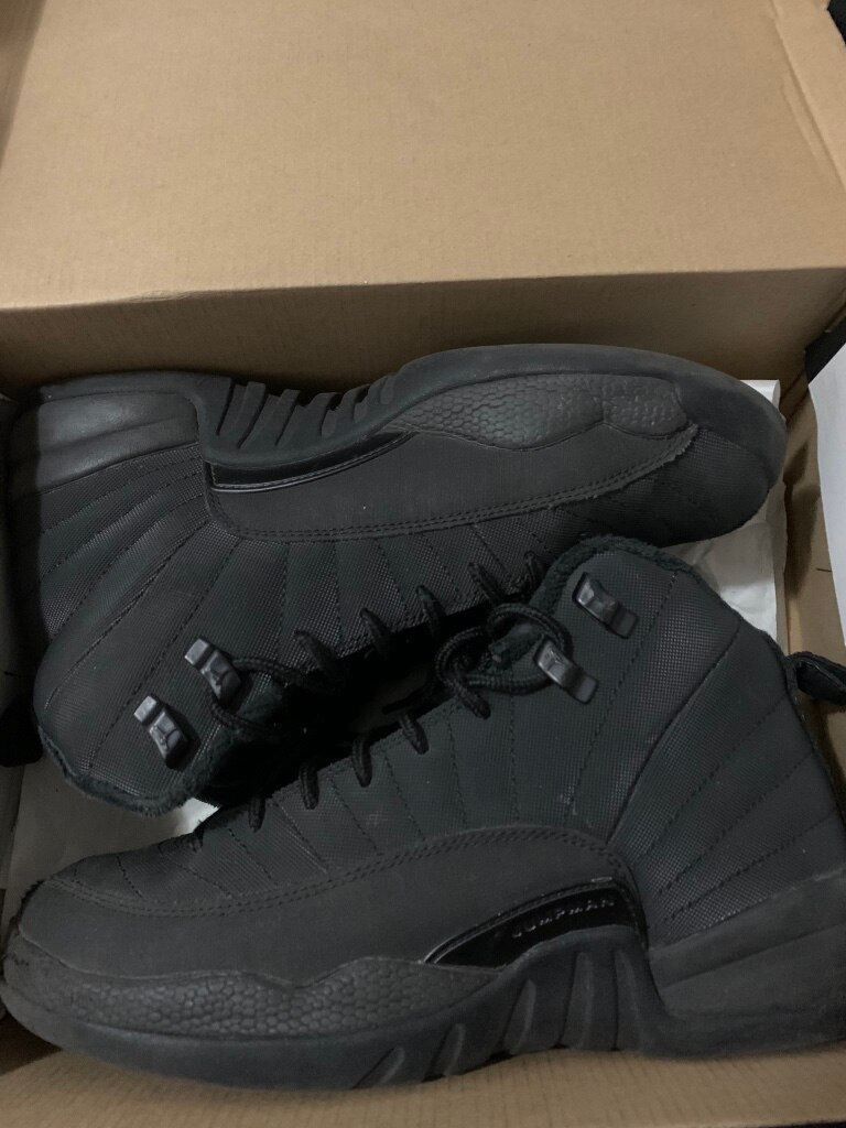 Photo Jordan Retro 12 Winter