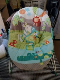 baby's white, gray, green and blue bouncer