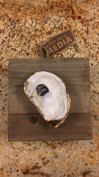 Oyster  Art hangs on wall  Reserve, 70084