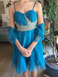 Blue embroidered dress Chevy Chase, 20815