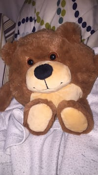 Soft Bear Washington, 20010