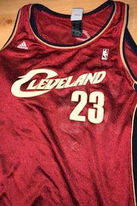 adidas Lebron james cavs jersey Langley, V3A 1A6