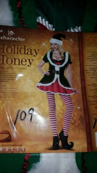 New Adult Holiday Honey Costume  South Zanesville, 43701